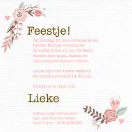 Uitnodigingen 164617B