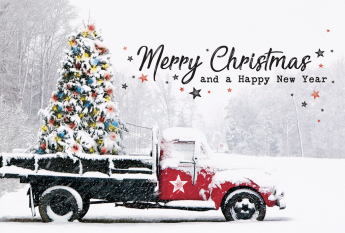 Kerst- & Nieuwjaarskaarten 631003N