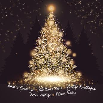 Kerst- & Nieuwjaarskaarten 631004N