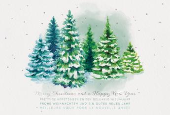 Kerst- & Nieuwjaarskaarten 631021N