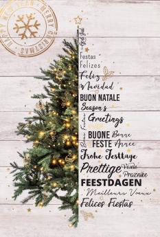 Kerst- & Nieuwjaarskaarten 631025N