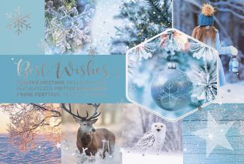 Kerst- & Nieuwjaarskaarten 631031N