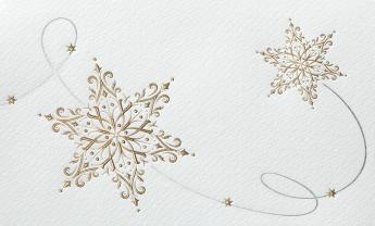 Kerst- & Nieuwjaarskaarten 631047N
